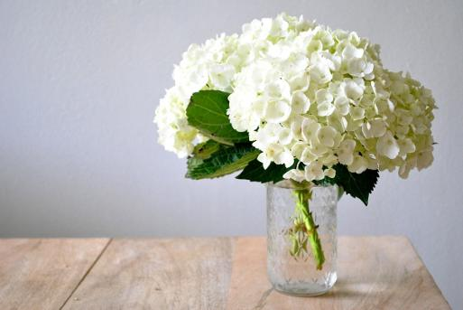 How to prolong the life of hydrangea cut flowers white wedding hydrangea flowers at kays flower school mightylinksfo